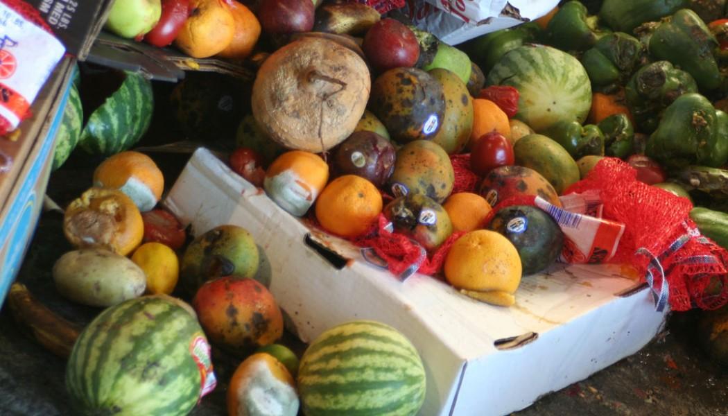 Con los alimentos que se desperdician en América Latina, se podría alimentar a 300 millones de personas