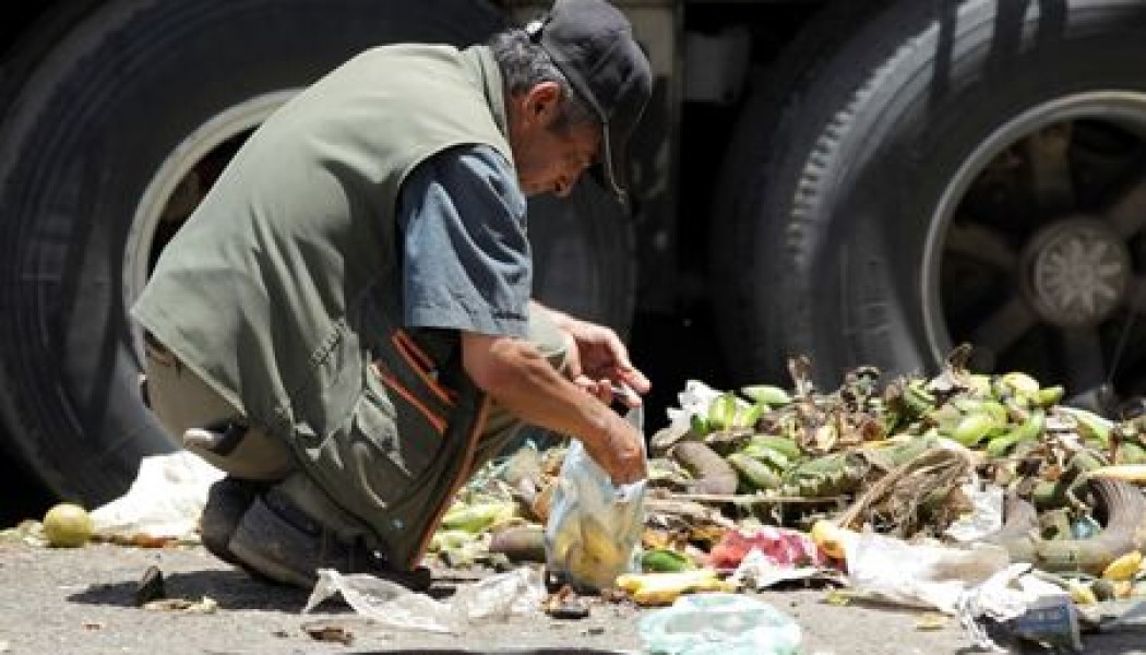 Para ayudar a frenar el cambio climático se debe dejar de desperdiciar comida: científicos